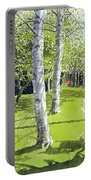 Silver Birches Portable Battery Charger by Lucy Willis