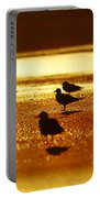 Silver Gulls On Golden Beach Portable Battery Charger
