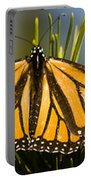 Single Monarch Butterfly Portable Battery Charger