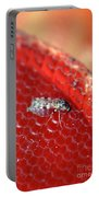 Sixteenth-inch Long Female Biting Midge Portable Battery Charger