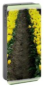 Skagit Valley Tulips 2 Portable Battery Charger