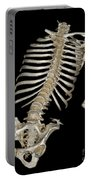 Skeletal Reconstruction Portable Battery Charger