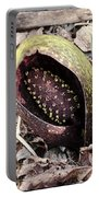 Skunk Cabbage Baby Aka  Polecat Weed Portable Battery Charger