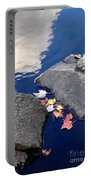 Sky Reflection Leaves And Rocks Portable Battery Charger