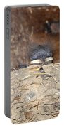 Sleeping Barn Swallows Portable Battery Charger