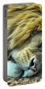 Sleeping Lion Portable Battery Charger