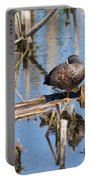 Sleeping Teal Portable Battery Charger