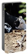 Sleepy Arizona Cows Portable Battery Charger