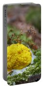 Slime Mould Portable Battery Charger