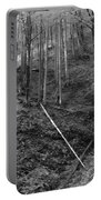Slovenian Forest In Black And White Portable Battery Charger