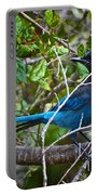 Small Blue Jay Of California Portable Battery Charger
