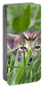 Small Kitten In The Grass Portable Battery Charger