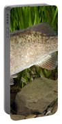 Smallmouth Bass Micropterus Dolomieu Portable Battery Charger