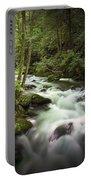 Smokey Mountain Stream No.312 Portable Battery Charger