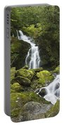 Smoky Mountain Waterfall - Mouse Creek Falls Portable Battery Charger