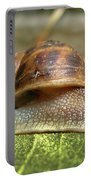 Snail Portable Battery Charger