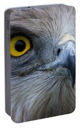 Snake Eagle 2 Portable Battery Charger