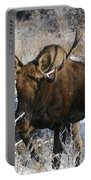 Snow Bull Portable Battery Charger