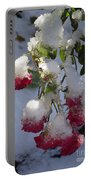 Snow Covered Roses Portable Battery Charger