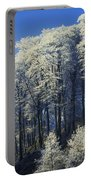 Snow Covered Trees In A Forest, County Portable Battery Charger