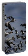 Snow Goose Blast Off Portable Battery Charger