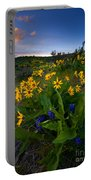 Snow Mountain Sunset Portable Battery Charger