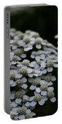 Snow Sport Yarrow Portable Battery Charger