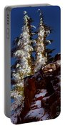 Snow Tipped Trees  Portable Battery Charger