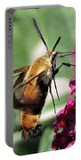 Snowberry Clearwing Moth Portable Battery Charger