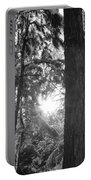 Snowy Forest Bw Portable Battery Charger