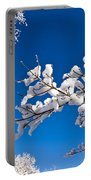 Snowy Trees And Blue Sky Portable Battery Charger