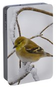 Snowy Yellow Finch Portable Battery Charger