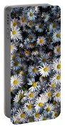 So Many Daisies Portable Battery Charger
