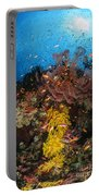 Soft Coral And Sea Fan, Fiji Portable Battery Charger