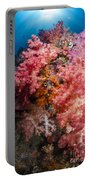 Soft Coral In Raja Ampat, Indonesia Portable Battery Charger