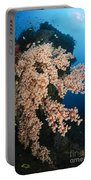 Soft Coral On The Liberty Wreck, Bali Portable Battery Charger