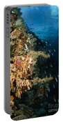 Soft Coral Seascape And Rainbow Portable Battery Charger