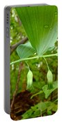 Solomon's Seal Wildflower - Polygonatum Commutatum Portable Battery Charger
