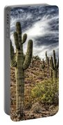 Sonoran Desert II Portable Battery Charger