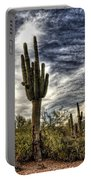 Sonoran Desert Iv Portable Battery Charger