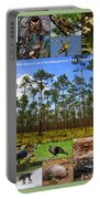 Southeastern Pine Forest Wildlife Poster Portable Battery Charger