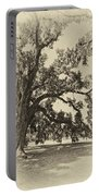 Southern Comfort Sepia Portable Battery Charger by Steve Harrington