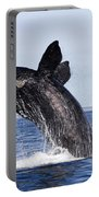 Southern Right Whale Portable Battery Charger