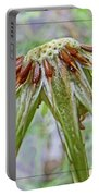 Spent Dandilion Portable Battery Charger