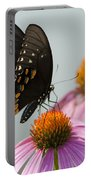 Spicebush Butterfly On Echinacea Portable Battery Charger