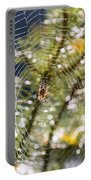 Spider On Web Portable Battery Charger