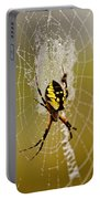 Spider Power Portable Battery Charger