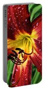 Spiderman The Day Lily Portable Battery Charger