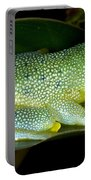 Spiny Glass Frog Portable Battery Charger