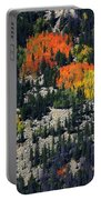 Splashes Of Fall Portable Battery Charger